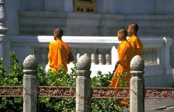 Buddhist-monks-Thailand