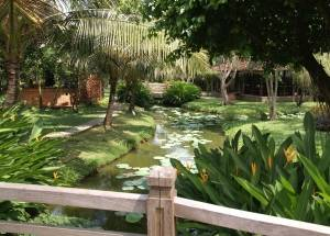Garden Mekong South Vietnam