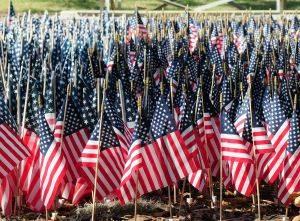 US flag veterans memorial park Tampa Florida